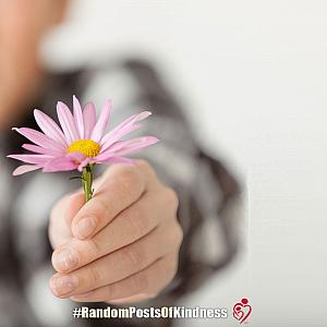 kindness-frame-offered-flower.jpg