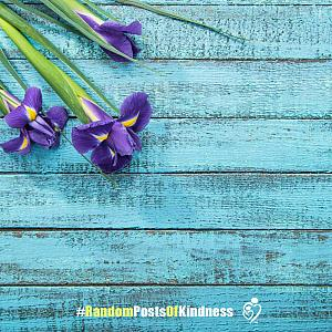 kindness-frame-orchids.jpg